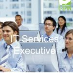 IT Services Executive